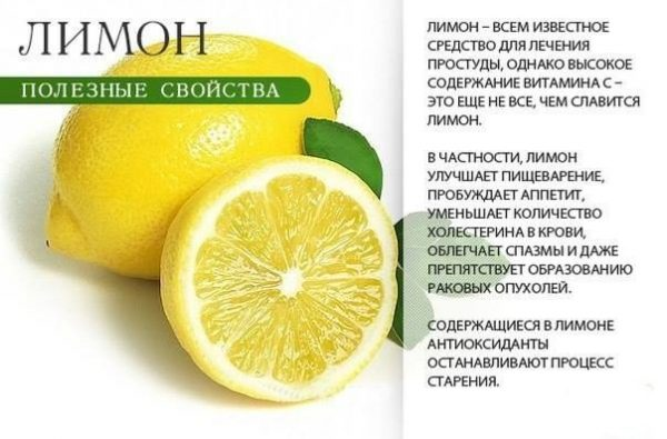 Зеленый чай с лимоном и имбирем для похудения