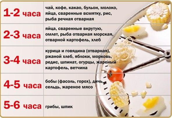 Время переваривания пищи
