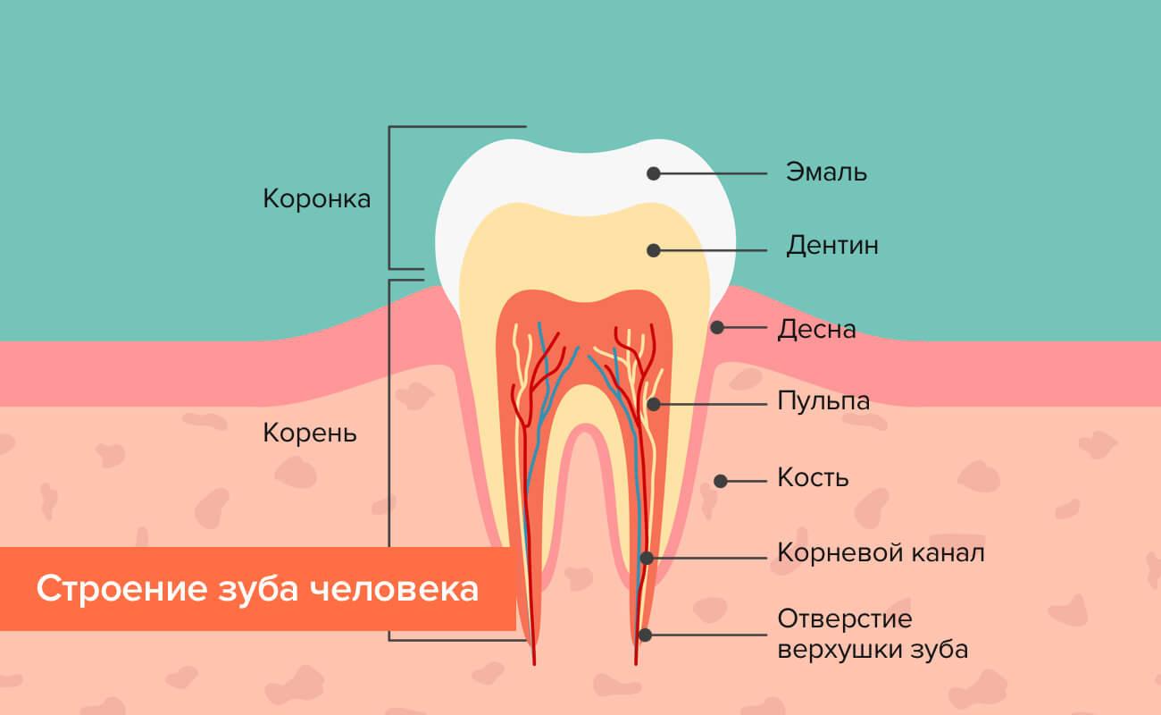 Способы отбелить зубы в домашних условиях