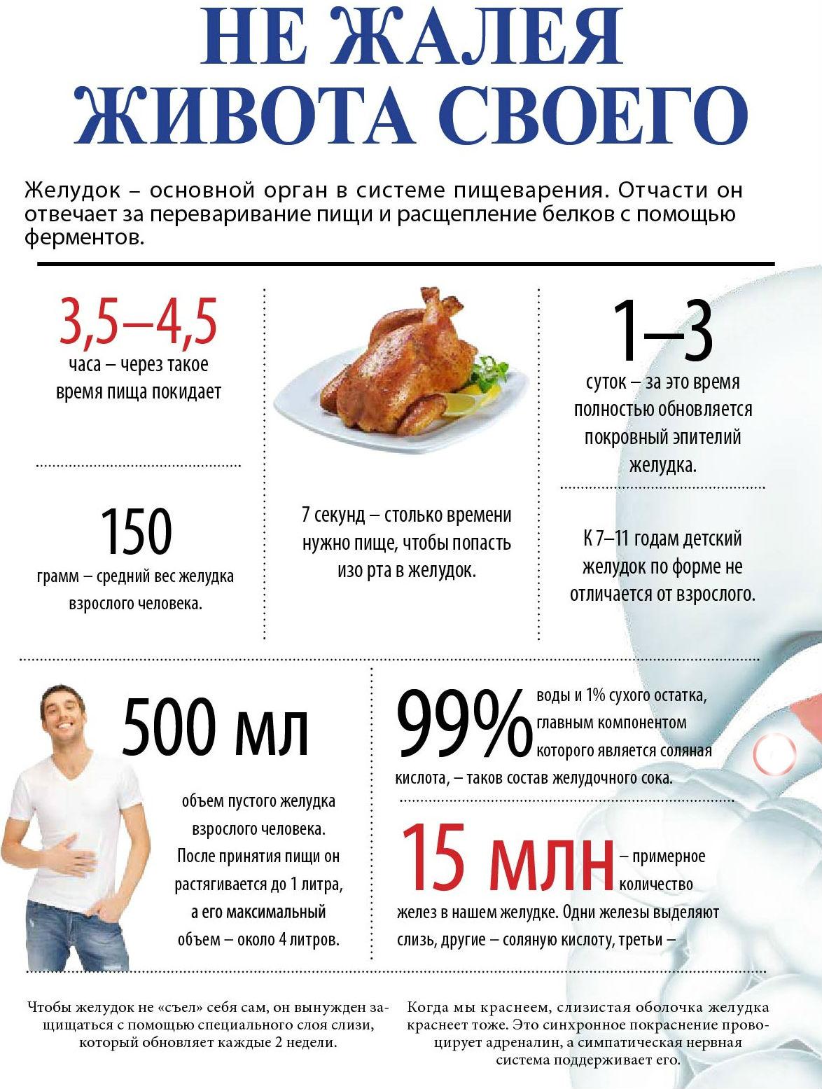 Как уменьшить желудок, чтобы похудеть