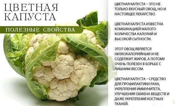 Рецепты блюд из цветной капусты
