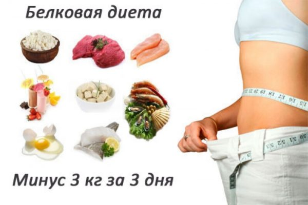 Диета на белковых продуктах