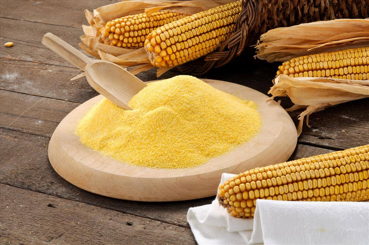 Кукурузная мука: полезные свойства для похудения