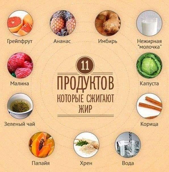 Продукты, которые сжигают жиры в организме