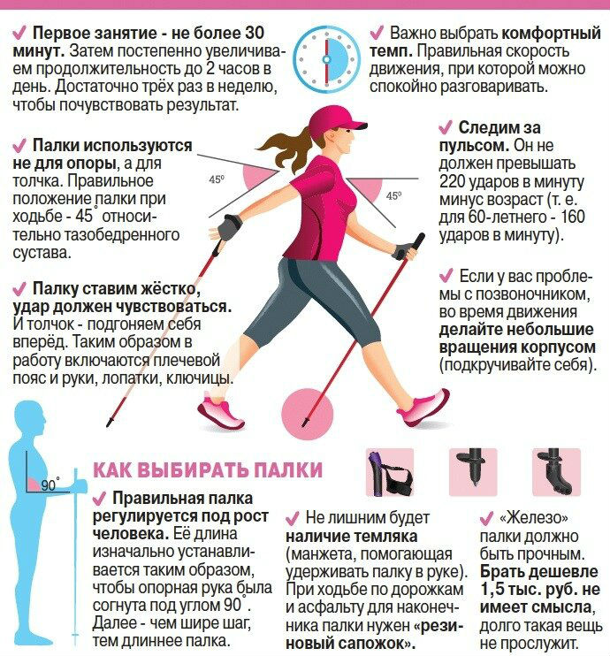 Польза скандинавской ходьбы для похудения