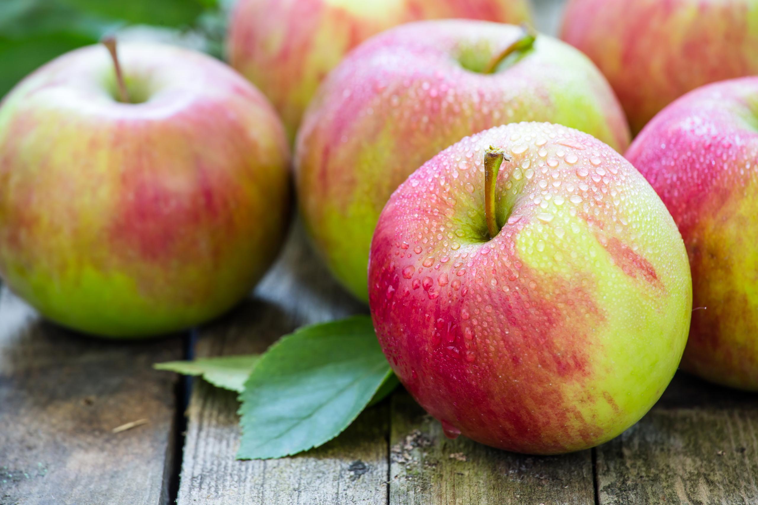 яблоки осенняя диета
